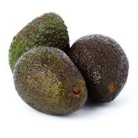 avocado_815890661