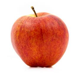 apple_gala2_lg1